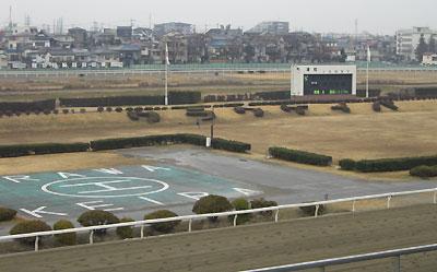 urawakeiba0102